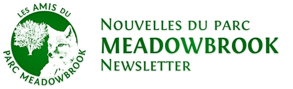 meadbowbrook_newsletter_banner